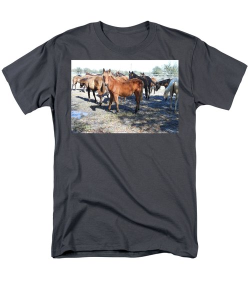 Men's T-Shirt  (Regular Fit) featuring the photograph Young Cracker Horses by Kay Gilley
