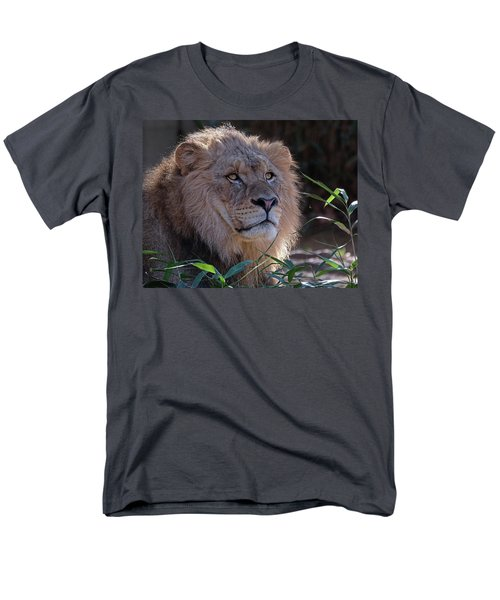 Young Lion King Men's T-Shirt  (Regular Fit) by Ronda Ryan