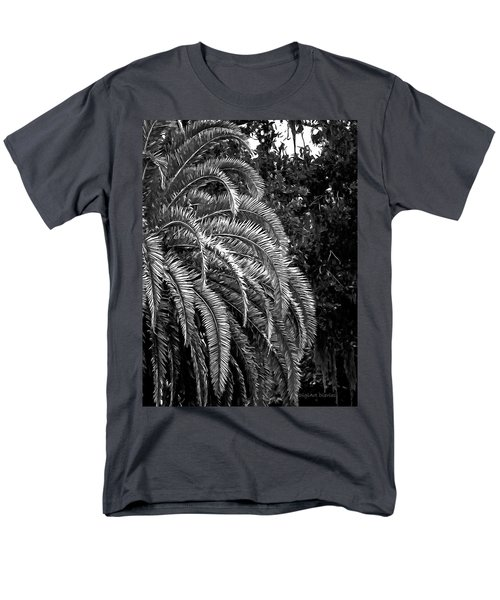 Men's T-Shirt  (Regular Fit) featuring the photograph Zebra Palm by DigiArt Diaries by Vicky B Fuller