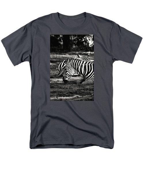 Zebras Men's T-Shirt  (Regular Fit)