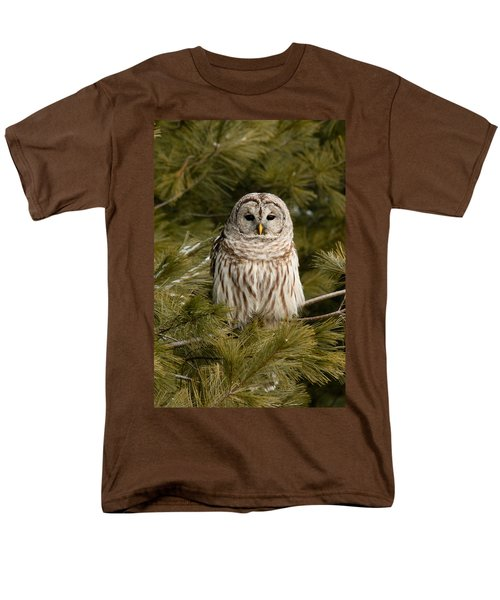Barred Owl In A Pine Tree. Men's T-Shirt  (Regular Fit) by Michel Soucy