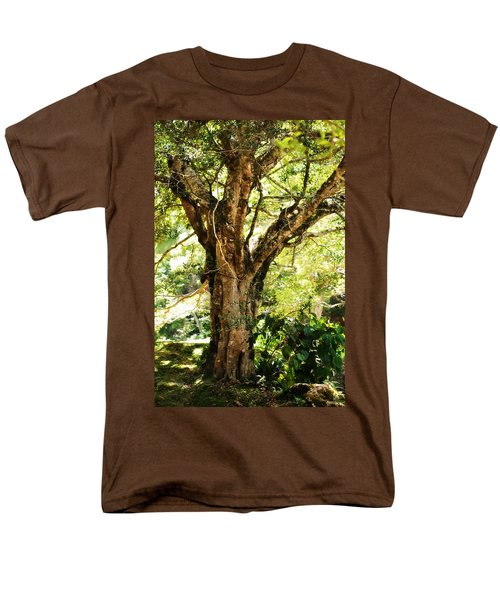Kingdom Of The Trees. Peradeniya Botanical Garden. Sri Lanka Men's T-Shirt  (Regular Fit) by Jenny Rainbow