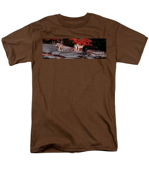 Timber Wolves Under A Red Maple Tree - Pano Men's T-Shirt  (Regular Fit) by Les Palenik