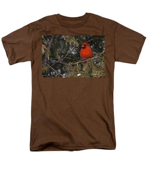Northern Cardinal Men's T-Shirt  (Regular Fit) by Michael Cummings