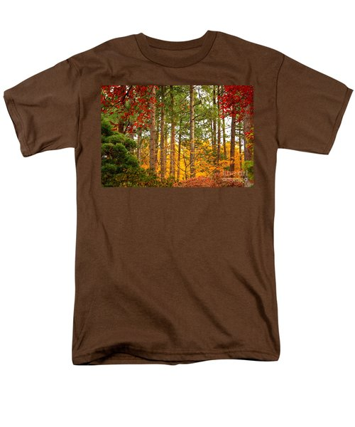 Autumn Canvas Men's T-Shirt  (Regular Fit)