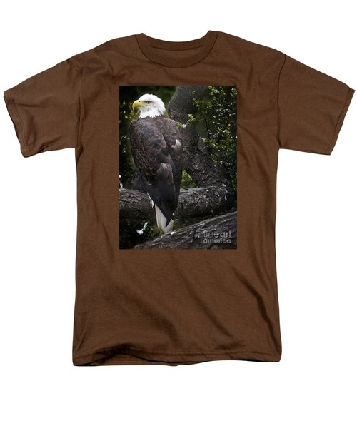 Bald Eagle Men's T-Shirt  (Regular Fit) by David Millenheft