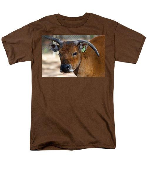 Banteng Girl Men's T-Shirt  (Regular Fit) by Miroslava Jurcik