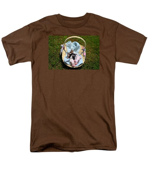 Calicos Pups At Two Days Men's T-Shirt  (Regular Fit) by Kathryn Meyer