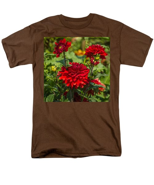 Cluster Of Dahlias Men's T-Shirt  (Regular Fit) by Jane Luxton