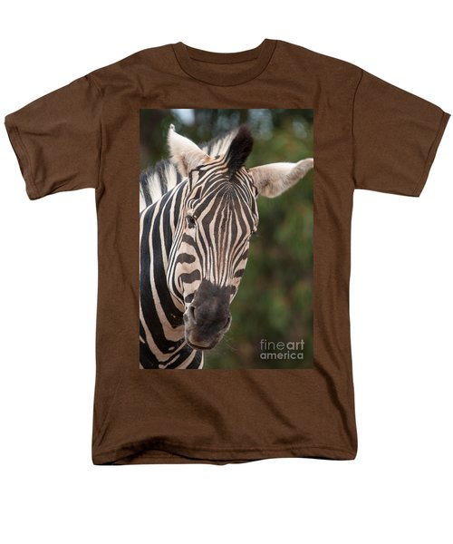 Curious Zebra Men's T-Shirt  (Regular Fit) by Ray Warren
