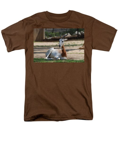 Dama Gazelle Men's T-Shirt  (Regular Fit) by DejaVu Designs