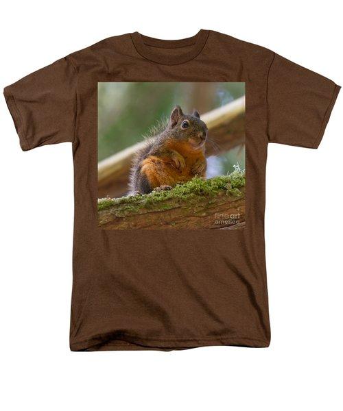 Douglas Squirrel Men's T-Shirt  (Regular Fit) by Paul Rebmann