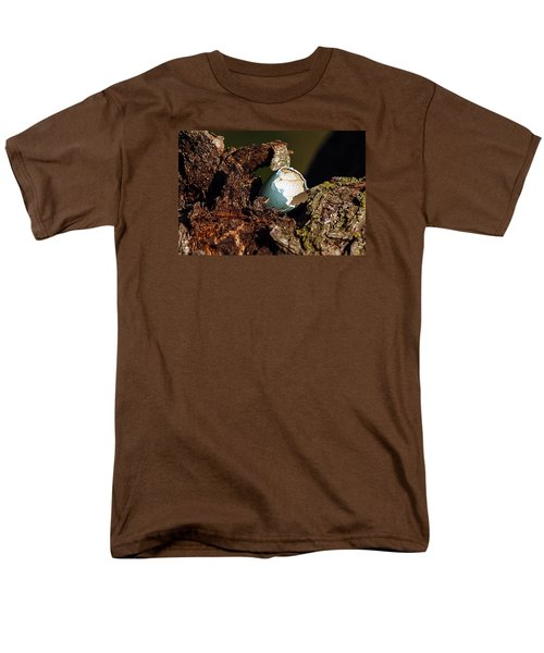 Eggs Of Nature 1 Men's T-Shirt  (Regular Fit) by David Lester