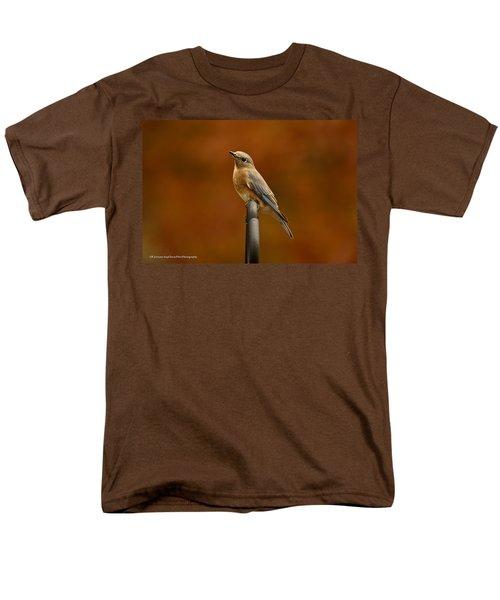 Men's T-Shirt  (Regular Fit) featuring the photograph Female Bluebird by Robert L Jackson