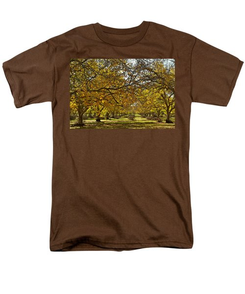 Golden Walnut Orchard Men's T-Shirt  (Regular Fit) by Michele Myers