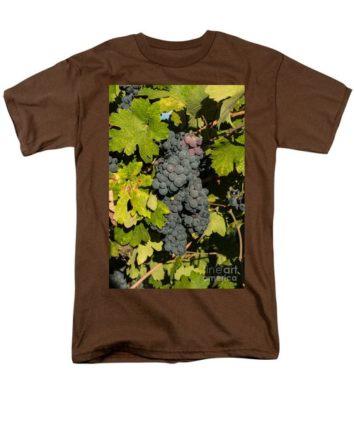 Grape Harvest Men's T-Shirt  (Regular Fit) by Suzanne Luft