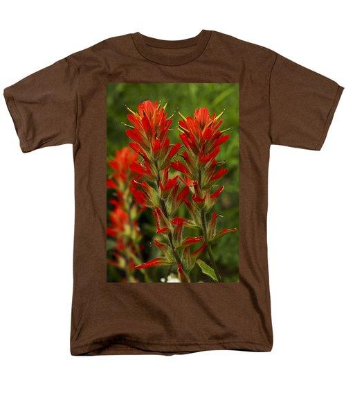 Indian Paintbrush Men's T-Shirt  (Regular Fit) by Alan Vance Ley