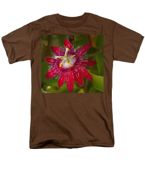 Men's T-Shirt  (Regular Fit) featuring the photograph Passion Flower by Jane Luxton
