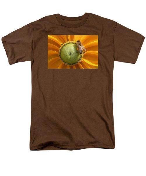 Pollen Time Men's T-Shirt  (Regular Fit)