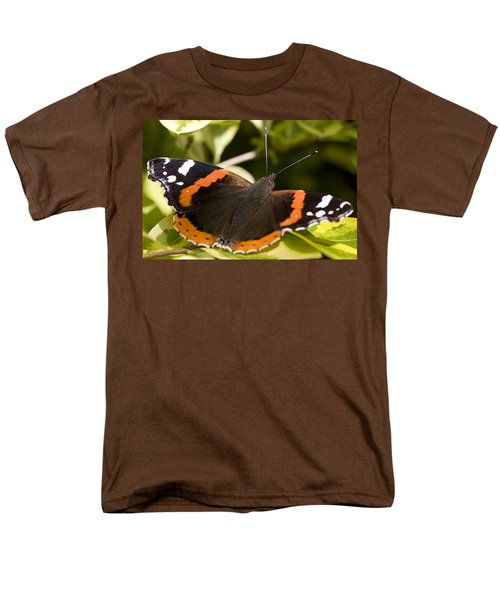 Red Admiral Butterfly Men's T-Shirt  (Regular Fit) by Richard Thomas