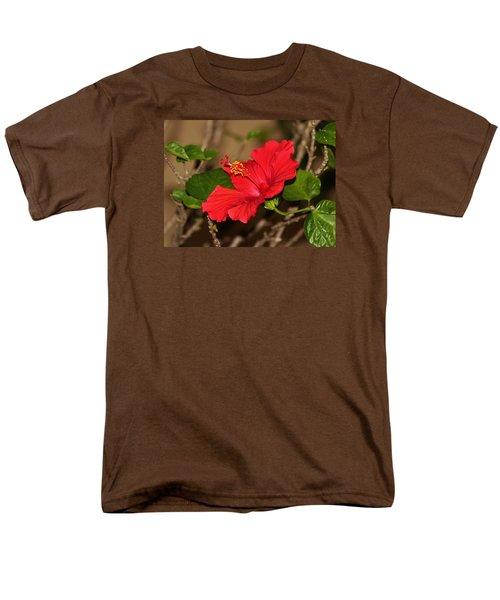 Red Hibiscus Flower Men's T-Shirt  (Regular Fit)