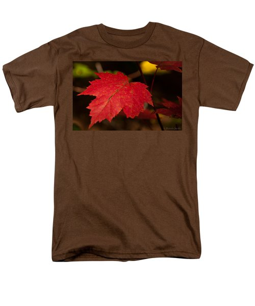 Red Maple Leaf In Fall Men's T-Shirt  (Regular Fit) by Brenda Jacobs