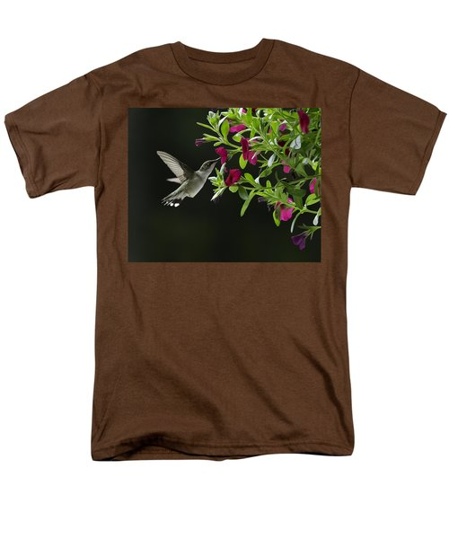 Sweet Nectar Men's T-Shirt  (Regular Fit)