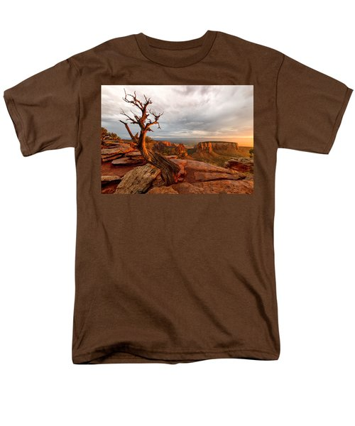 The Light On The Crooked Old Tree Men's T-Shirt  (Regular Fit) by Ronda Kimbrow