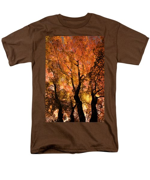The Trees Dance As The Sun Smiles Men's T-Shirt  (Regular Fit) by Don Schwartz