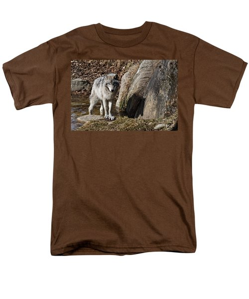Men's T-Shirt  (Regular Fit) featuring the photograph Timber Wolf In Pond by Wolves Only