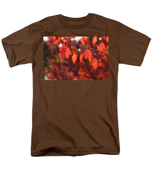 Men's T-Shirt  (Regular Fit) featuring the photograph Autumn Leaves In Medford by Mick Anderson