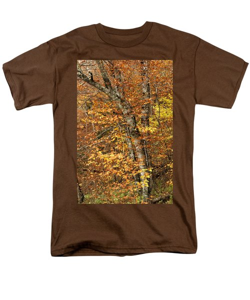 Autumn Colors Men's T-Shirt  (Regular Fit) by Andrew Soundarajan