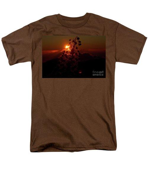 Men's T-Shirt  (Regular Fit) featuring the photograph Ahinahina - Silversword - Argyroxiphium Sandwicense - Sunrise by Sharon Mau