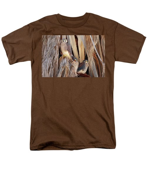 American Kestrels Men's T-Shirt  (Regular Fit) by Dan Redmon