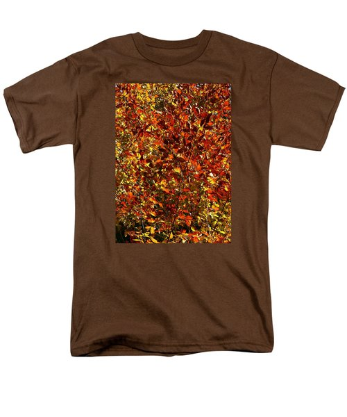 Autumn Colors Men's T-Shirt  (Regular Fit) by Karen Harrison