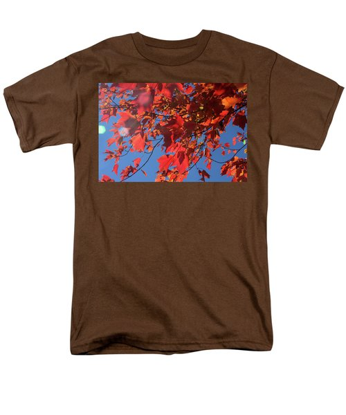 Branches Of Red Maple Leaves On Clear Sky Background Men's T-Shirt  (Regular Fit)