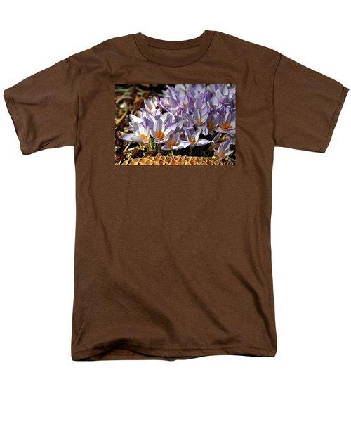 Crocuses Serenade Men's T-Shirt  (Regular Fit) by Ed  Riche