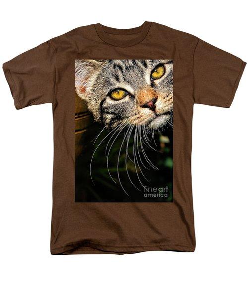 Curious Kitten Men's T-Shirt  (Regular Fit) by Meirion Matthias