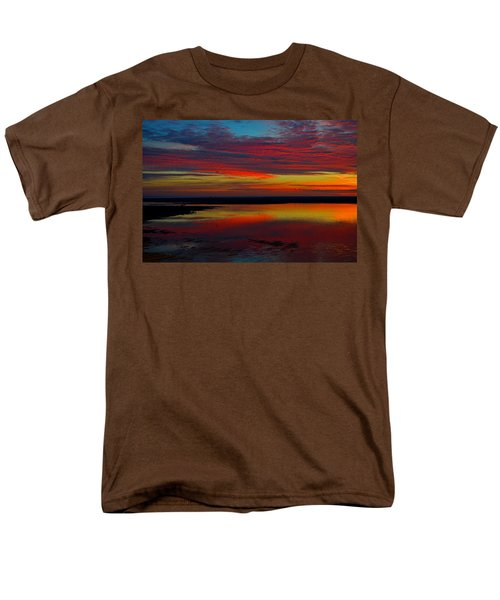 Fireworks From Nature Men's T-Shirt  (Regular Fit) by Dianne Cowen