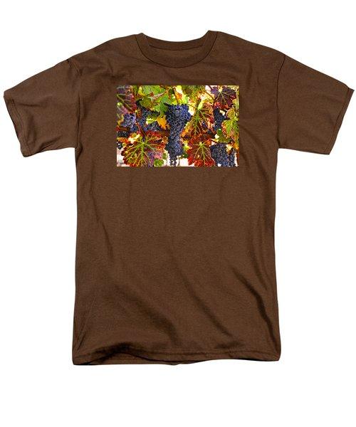 Grapes On Vine In Vineyards Men's T-Shirt  (Regular Fit) by Garry Gay