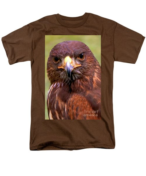 Harris Hawk Portriat Men's T-Shirt  (Regular Fit) by Stephen Melia