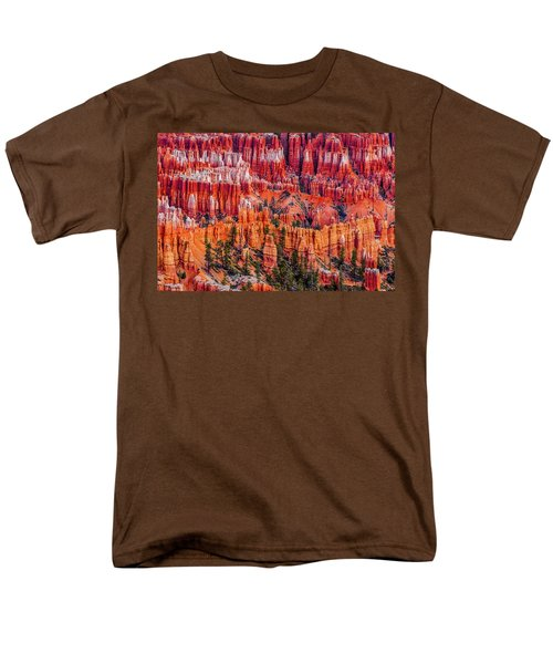 Hoodoo Forest Men's T-Shirt  (Regular Fit) by David Cote