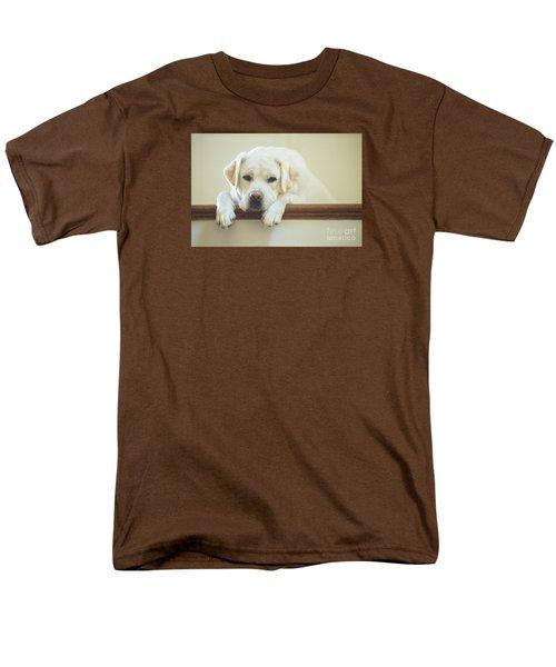 Labrador Retriever On The Stairs Men's T-Shirt  (Regular Fit) by Diane Diederich