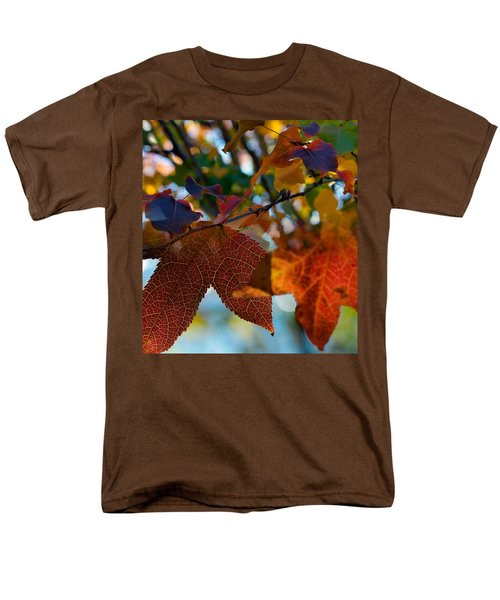 Late Autumn Colors Men's T-Shirt  (Regular Fit) by Stephen Anderson
