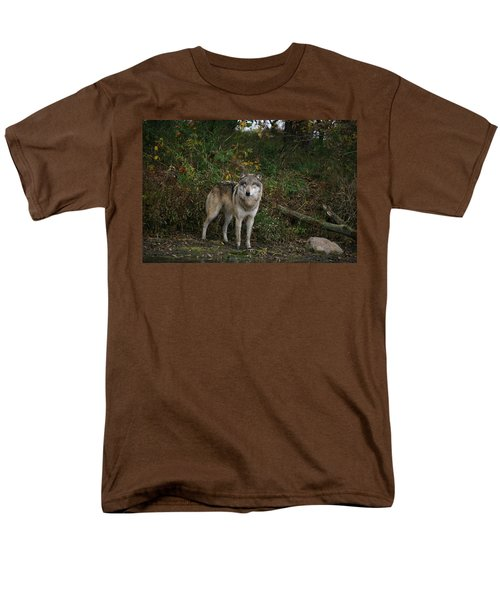 Men's T-Shirt  (Regular Fit) featuring the photograph Lupine Pose by Shari Jardina