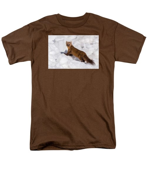 Pine Marten In Snow Men's T-Shirt  (Regular Fit) by Yeates Photography