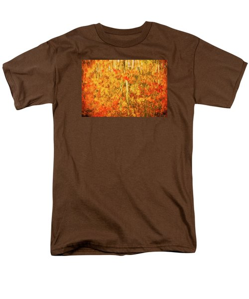 Reflections Of Fall Men's T-Shirt  (Regular Fit) by Rick Furmanek