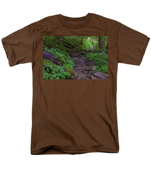 Rocky Path Men's T-Shirt  (Regular Fit) by David Cote
