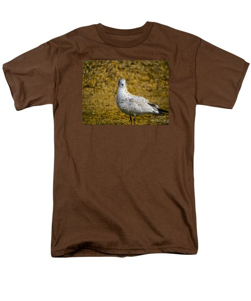 Men's T-Shirt  (Regular Fit) featuring the photograph Seagull Family by Melissa Messick