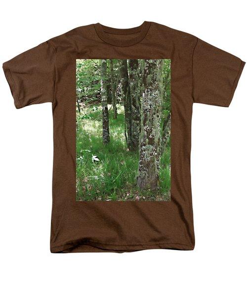 Soft Trees Men's T-Shirt  (Regular Fit) by Shari Jardina